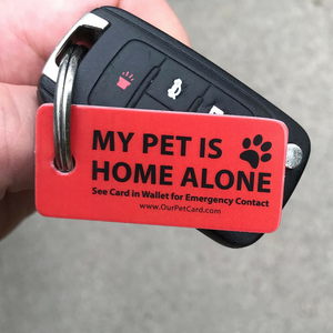 Emergency Pet Keyring Tag - Our Pet Card