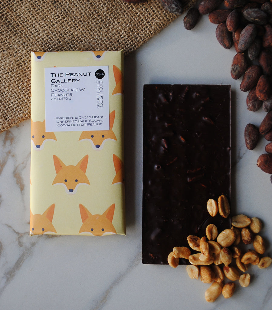 73% Peanut Gallery, Ecuador Dark Chocolate & Peanut Bar