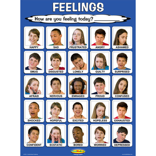 Laminated Teen Feelings Poster 18 x 24 inches product image