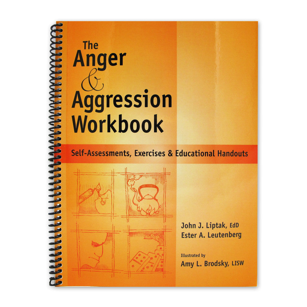The Anger and Aggression Workbook product image
