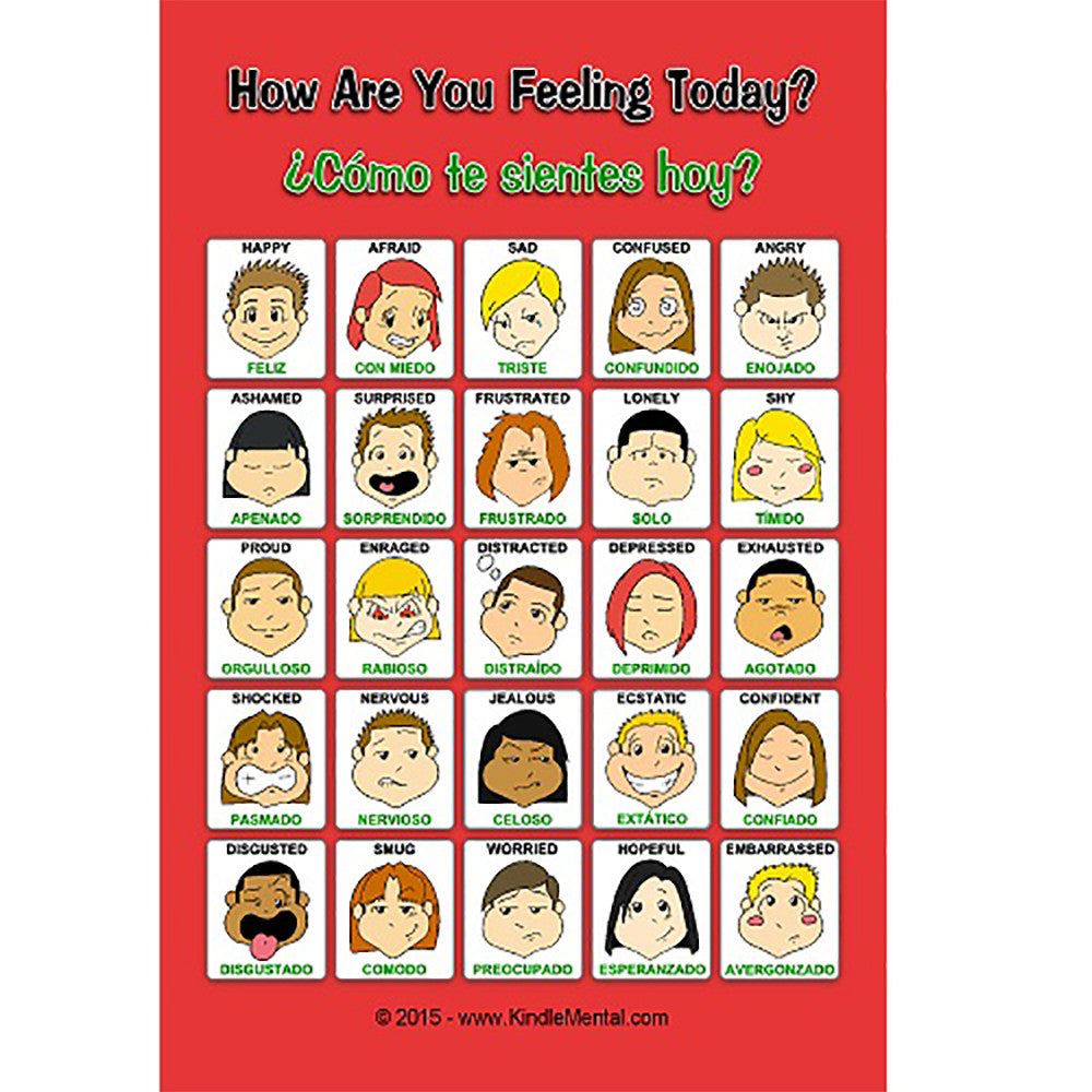 Mini Spanish/English Feelings Poster with Graphics Set of 12 product image