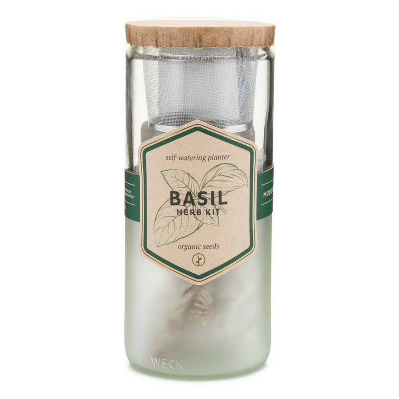 Organic Basil Eco Planter - Gifted and Present