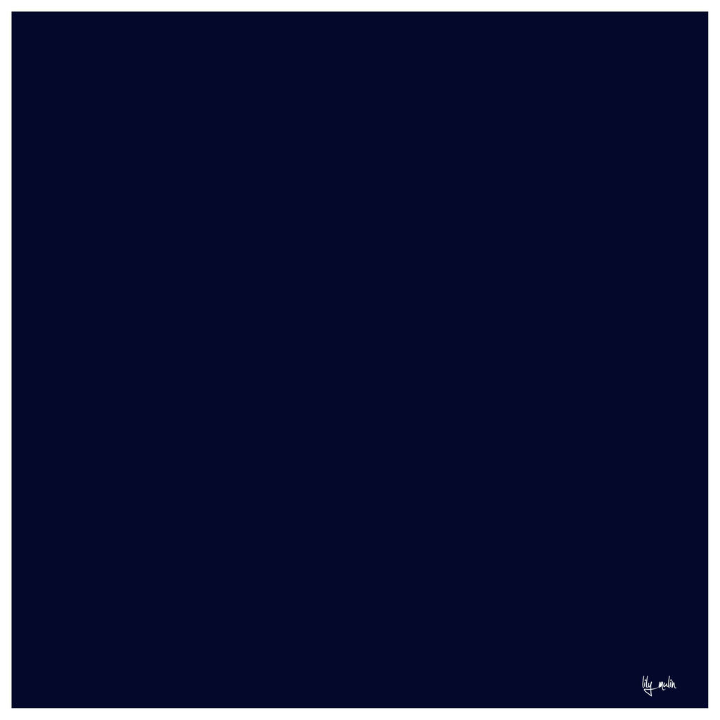 7163 - DP Navy w/White Border