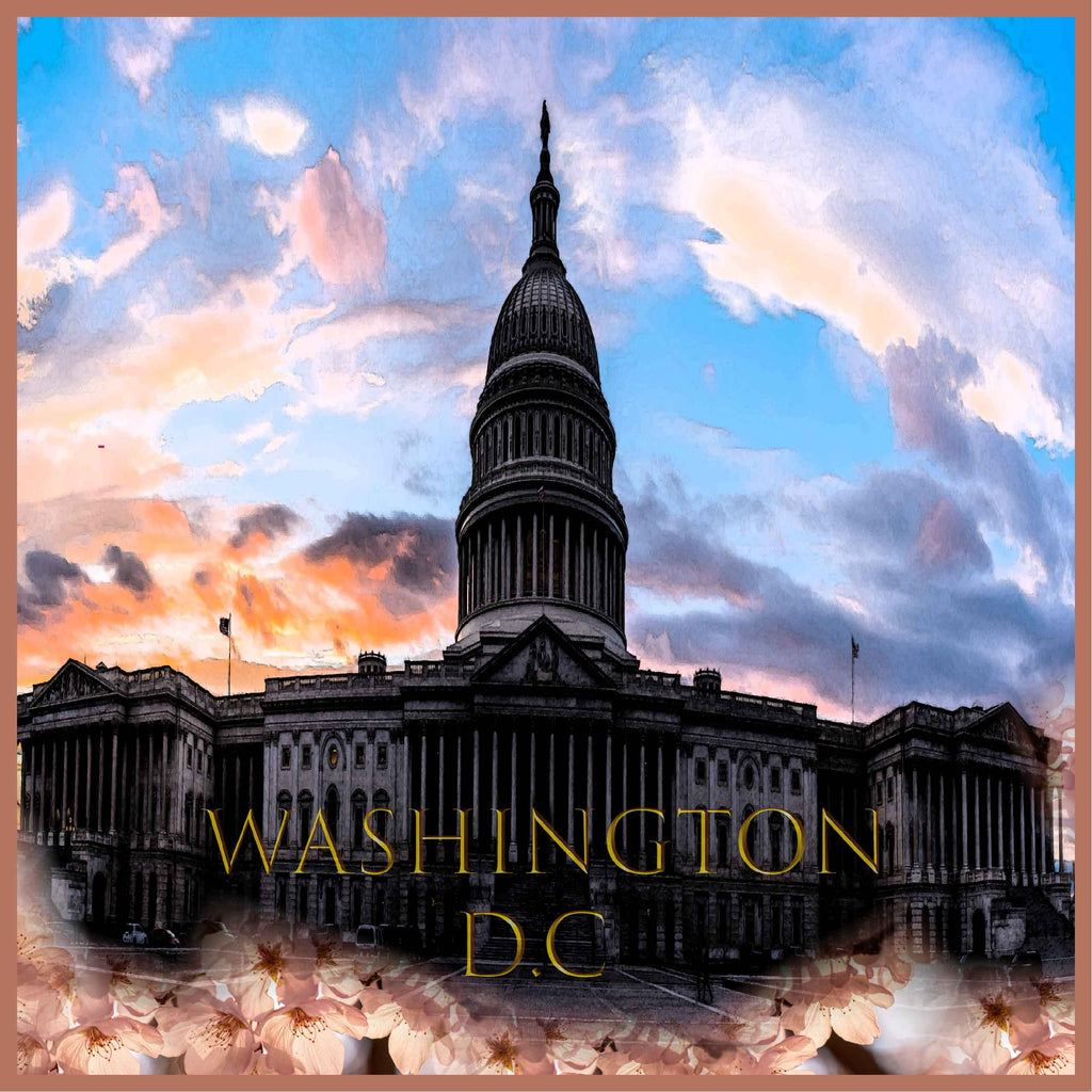 7294 - Washington D.C.