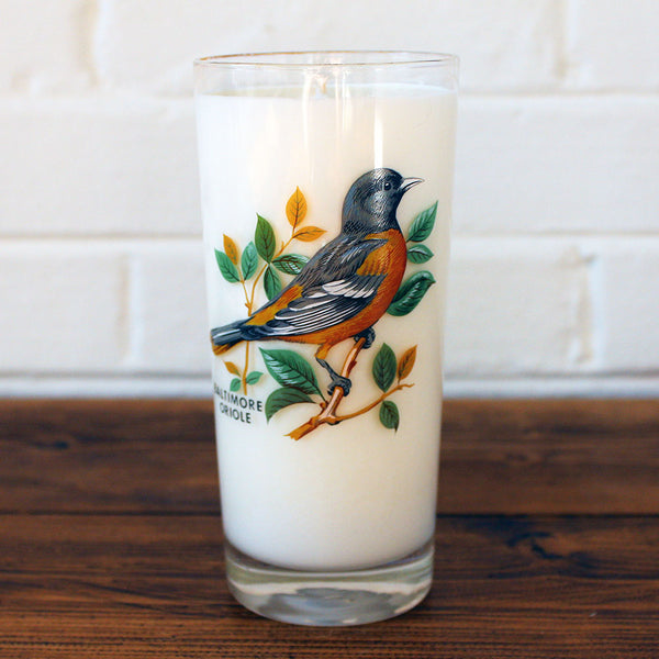 Great Lakes Soy Candle in a Vintage Bird Glass