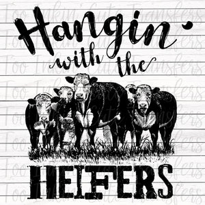 Hangin' with the Heifers Transfer