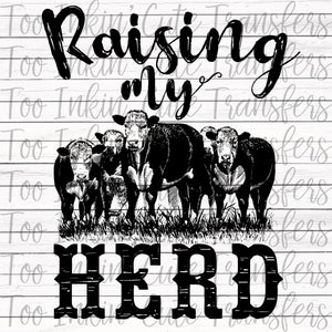 Raising my Herd Transfer