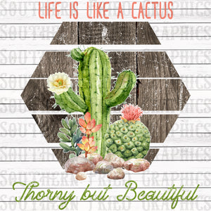 Life is Like a Cactus, Thorny but Beautiful Digital Graphic