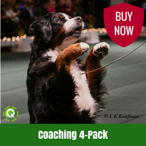 Four-Pack of Coaching Sessions