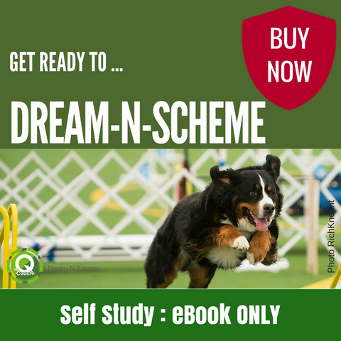 Dream-n-Scheme eBook ONLY - The Q Coach