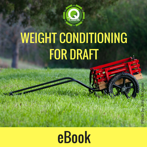 Guide to Weight Conditioning for Draft EBOOK - The Q Coach
