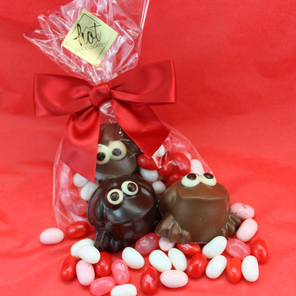 Valentine's Frog & Jelly Bellies