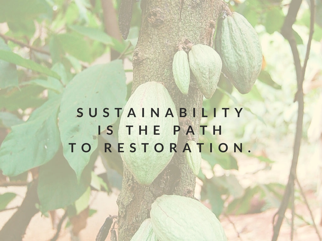 Sustainability Is the Path to Restoration
