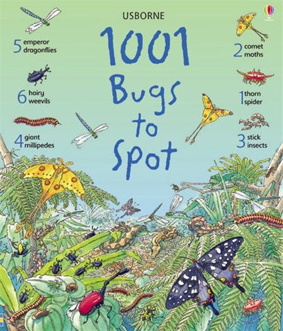 Usborne 1001 Bugs to Spot; A Hardback Beginners Book of Insects