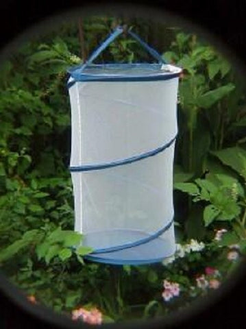 "24"" Tall Pop-Up Butterfly Cages for 60 Butterflies/Insects, Pack of 10"