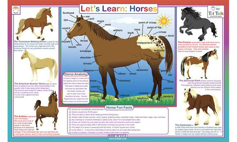 Let's Learn Horses - Equine Activity Placemat  by Tot Talk
