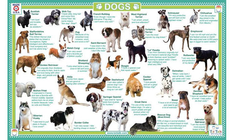 Dogs Activity Placemat by Tot Talk