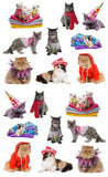 Mrs Grossman's Stickers - Pampered Cats