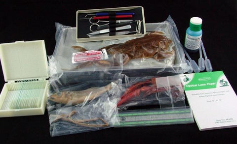 Apologia -Complete  Biology Kit Specimens, Slides & Tools