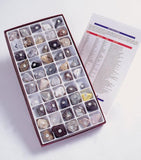 USA 50 Piece Rocks Minerals Collection with State Fact Book