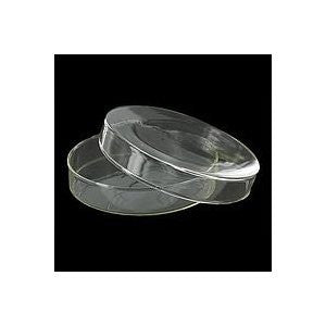 Borosilicate Glass Petri Dish: 60mm Diameter: Each with Cover