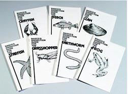 Dissecting Set of 7 Dissection Guides
