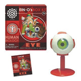 Ein-O's Human Biology Box Kit - The Human Eye