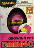 Growing Pet Hatching Pink Flamingo
