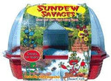 Sundew Savages Windowsill Greenhouse Kit w/ Carnivorous Plant Seeds