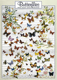 Colorful Butterflies of the World Poster, 26x38