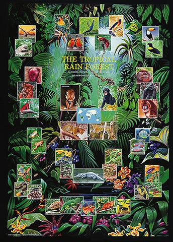 The Tropical Rain Forest and its Inhabitants - Wildlife Poster, 26x38