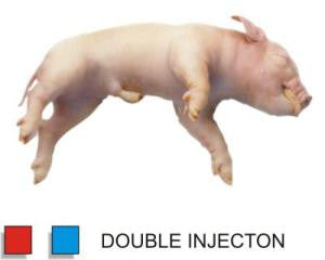 "Preserved 11-13"" Fetal Pig Double Injected - Pack of 10"