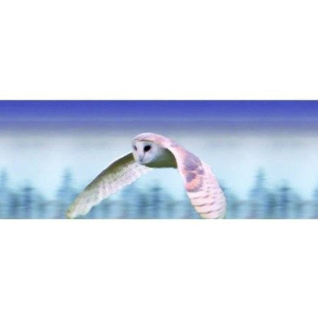 Animated Flying OWL 3D Bookmark - Ruler By Emotion Gallery