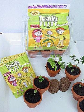 Tickle Me Ticklish Potted Plant Deluxe Greenhouse Kit