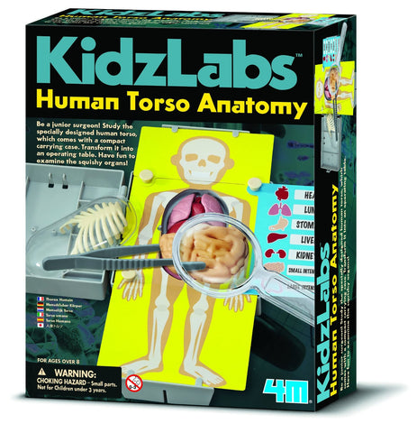 4M Kidz Labs Human Torso Anatomy Science & Learning Kit