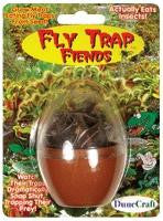 Fly Trap Fiends Egg Micro Terrarium w/ Carnivorous Venus Fly Trap Seeds