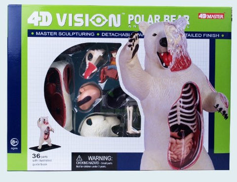 4D Vision Polar Bear Anatomy Model Puzzle