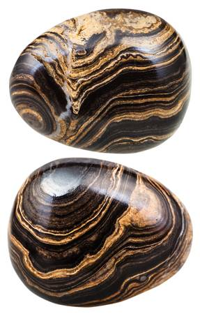 Stromatolite Tumbled Fossil Rock Specimens Approx. 3/4 Inch w Info Card - Pack of 2