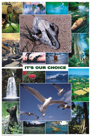 Laminated Its Our Choice Poster 24x36 Protect the Environment