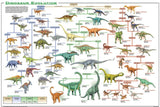 Dinosaur Evolution Poster 24x36