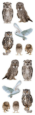 Full Roll - Mrs Grossman's Stickers - Owl - Animal Photos