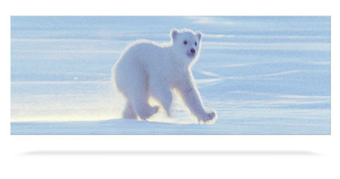 Animated Polar Bear Cub Bookmark with Ruler - by Emotion Gallery