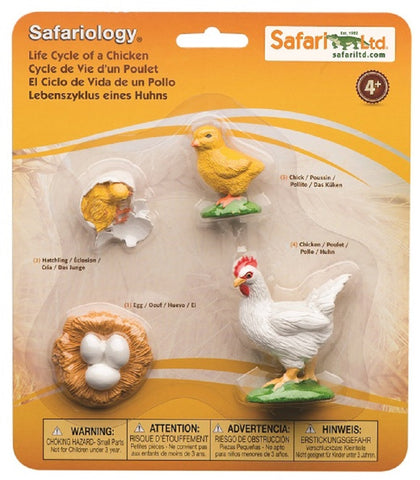 Life Cycle of a Chicken - 4 Piece Safariology Set