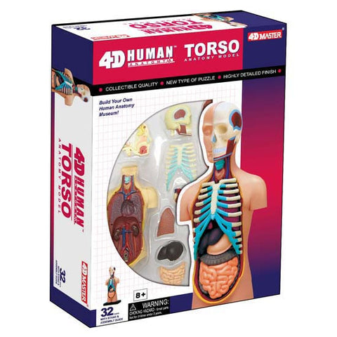 4D Human Anatomy Visable Torso Model 3D CutAway Puzzle