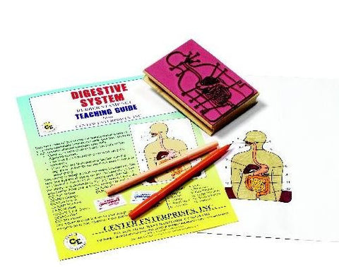 Anatomy of the Human Digestive System Rubber Stamper Set: 1 Stamp & Teachers Guide