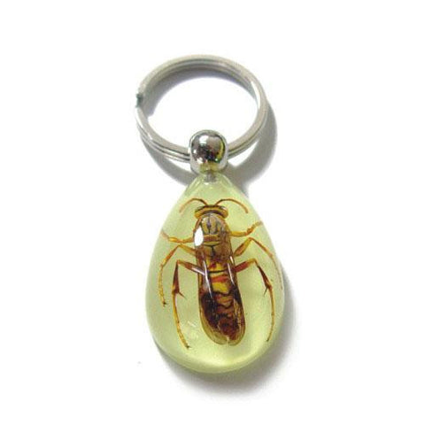 "2""  Lucite Key Chain with Choice of Insect Bug"