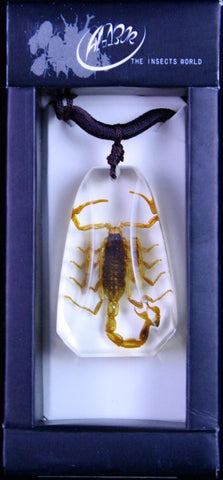 "1 3/8""  Lucite Necklace with Choice of Insect - Bug - Online Science Mall"