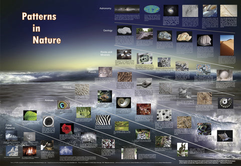 Patterns In Nature-Math Science Laminated Poster 38.5 x 27