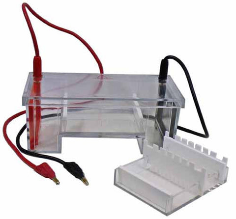 Electrophoresis Tank w Teachers Guide