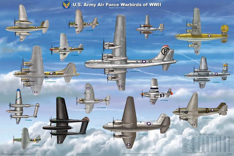 Laminated USAAF Warbirds WWII Poster 24x36 Scaled